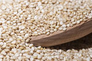 Quinoa bianca Auriemma Sardegna