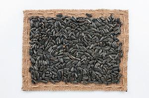 semi di girasole decorticati Auriemma Sardegna